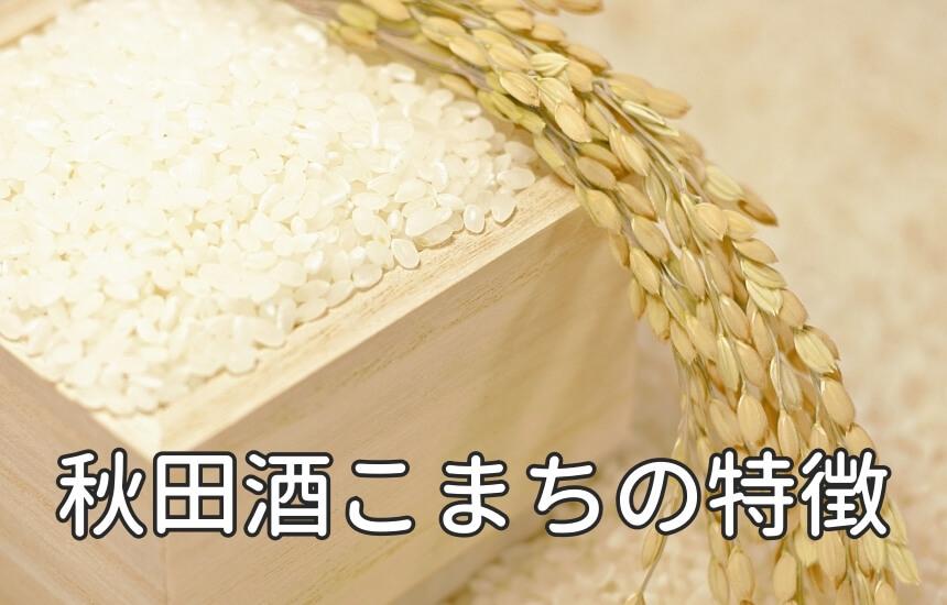 秋田酒こまちの特徴